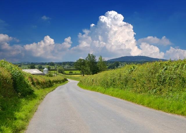 road-536464.jpg